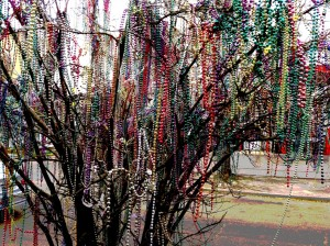 Beads_NOLA_Temporal Relish